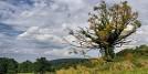 Ravne, Nacionalni park Fruška gora