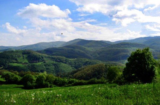 Pejzaž, Divčibare