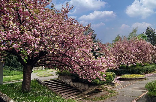 Friendship park - Vrnjačka banja