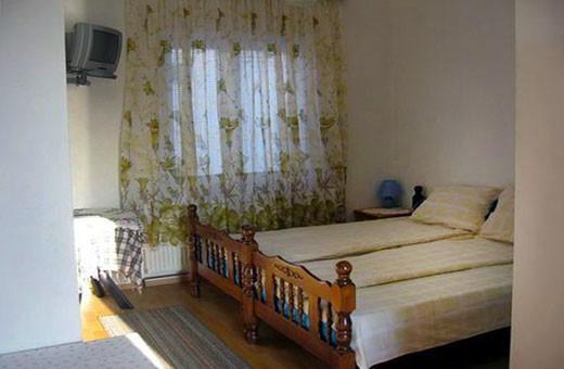 Room I category, Accommodation Božinović - Sokobanja