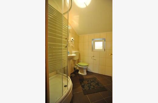 Apartman Daca kupatilo, Apartmani Izvor - Vrdnik