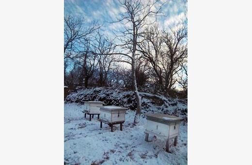 Zima, Seosko turističko domaćinstvo Pavlović - selo Vlakča, Kragujevac