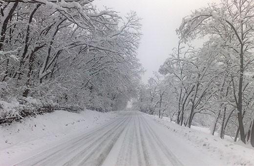 Zima, Seosko domaćinstvo Krstivojević - Selo Krčmar
