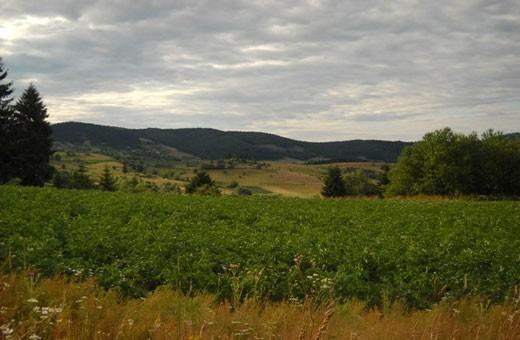 Rezervat biosfere Golija, Pansion Nebo - selo Rudno