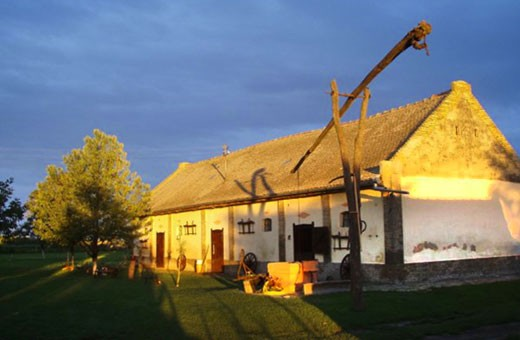 Brkin salaš - Čenej, Novi Sad