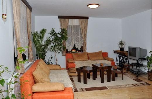 Lux apartman dnevna soba, Vila Bogdanović - Stara Planina