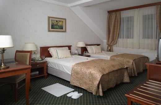 Dvokrevetna soba standard, Boutique Hotel Zlatnik - Zemun