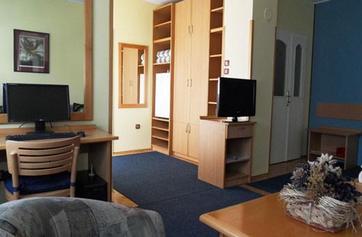 Room1/3, Voyager bed&breakfast - Novi Sad