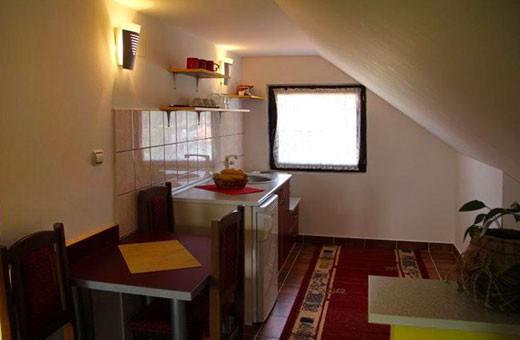 Studio 1 kuhinja, Apartmani Nika - Zlatibor
