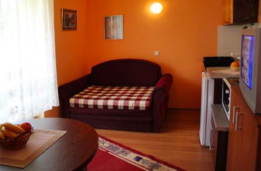Apartman 1 dnevni boravak, Apartmani Nika - Zlatibor
