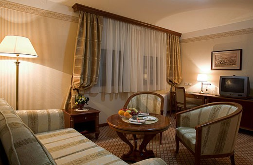 Apartman dnevna soba, Boutique Hotel Zlatnik - Zemun