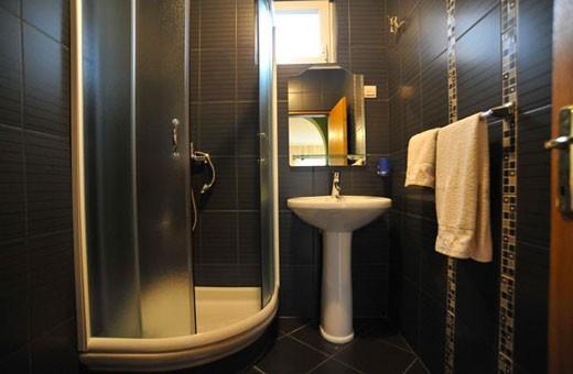 Apartman Irena kupatilo, Apartmani Izvor - Vrdnik