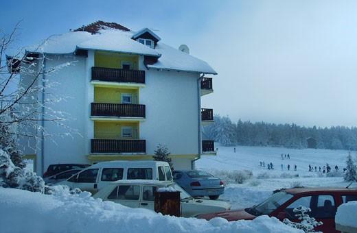 Apartman Milivojević - Zlatibor