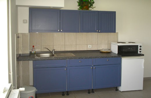 Apartement Kitchen, Apartments and rooms Miletić - Sokobanja