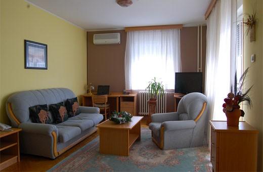 Lux apartment living room, Voyager bed&breakfast - Novi Sad