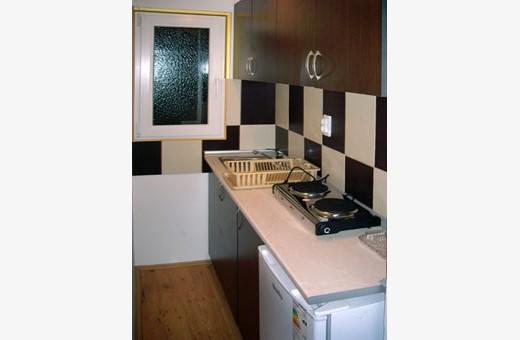 Apartment Kitchen, Accommodation Božinović - Sokobanja