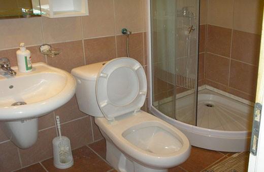 Kupatio apartmana, Apartmani i sobe Miletić - Sokobanja