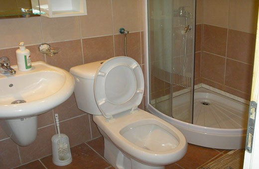 Apartement Bathroom, Apartments and rooms Miletić - Sokobanja