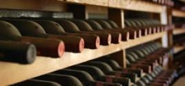 Putevi vina Srbije