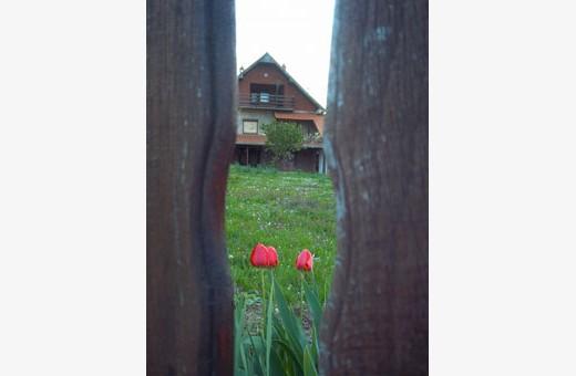 Kroz tarabu, Seosko turističko domaćinstvo Pavlović - selo Vlakča, Kragujevac