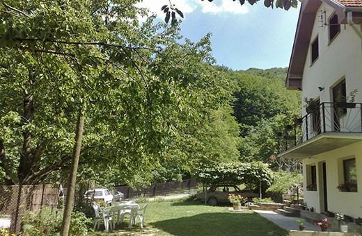 Courtyard, Rural household Krstivojević - Village Krčmar