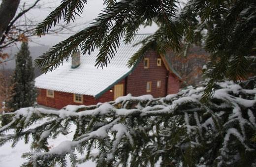 Winter, Hostel Montana - Koponik
