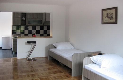 Accommodation Ristić - Niška Banja