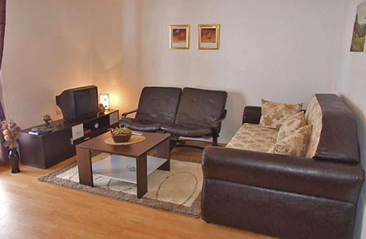 """Apartment 1 living room, Apartments """"Tarska kuća Viva"""" - Tara"""