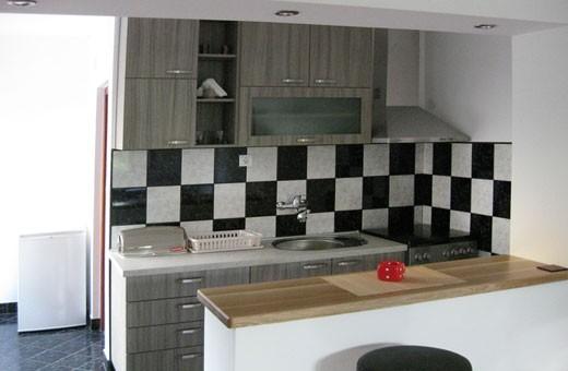 Apartment 1/3 Kitchen, Accommodation Ristić - Niška Banja