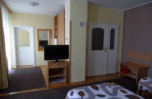 Room 1/3, Voyager bed&breakfast - Novi Sad