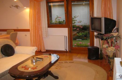 Apartment2 living room, Apartments Udovičić - Zlatibor