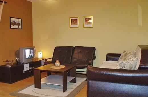 """Apartment 2 living room, Apartments """"Tarska kuća Viva"""" - Tara"""