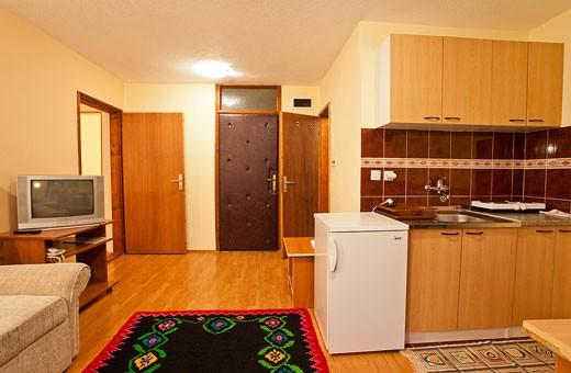 Apartment 1 living room, Pension Dabić - Zlatibor